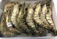 <p>Тигровые креветки с головой свежемороженые в панцире, навеска 13-15 шт на кг. Производство - Бангладеш. Расфасованы в коробки по 1 кг. Продаются коробками.</p>