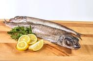 <p>Аргентина свежей морской заморозки, неразделанная. Небольшая – до 500 грамм – рыба по доступной цене, с нежным белым мясом.<br>Другие названия:</p><ul><li>серебрянка</li><li>золотая корюшка (хотя аргентина никакого отношения к корюшке не имеет)</li><li>Greater Argentine</li></ul><p></p>