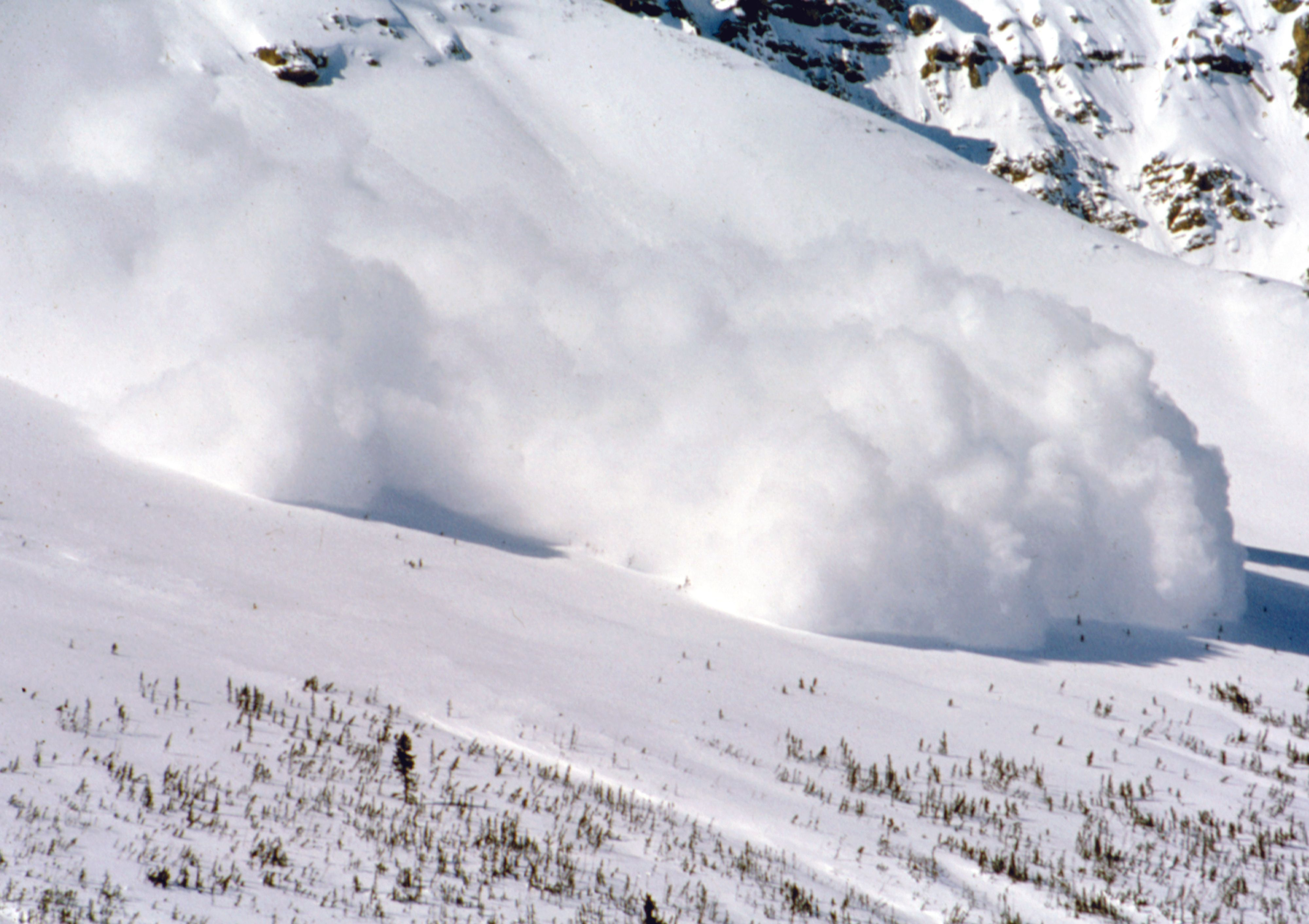 A large avalanche in the Rocky Mountains dwarfs the trees in its path.