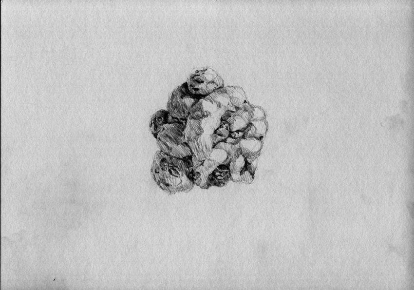 Esto es una papa |Lápiz sobre papel | Serie de 18 dibujos | 21 x 30 cm | 2011