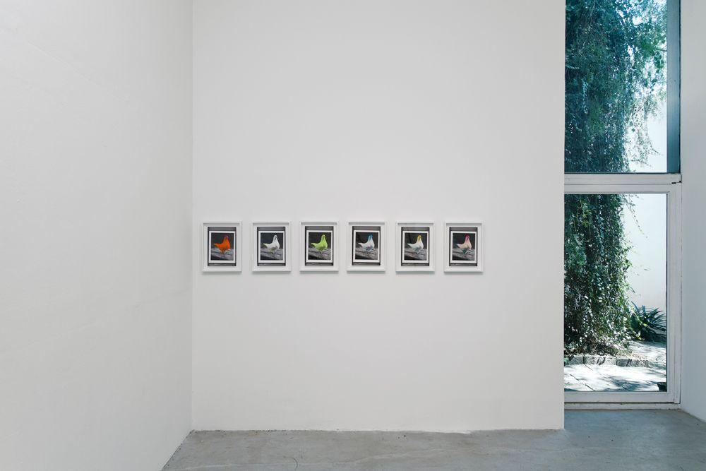 """Vista general de exhibición """"El loro desnudo"""" 2013"""