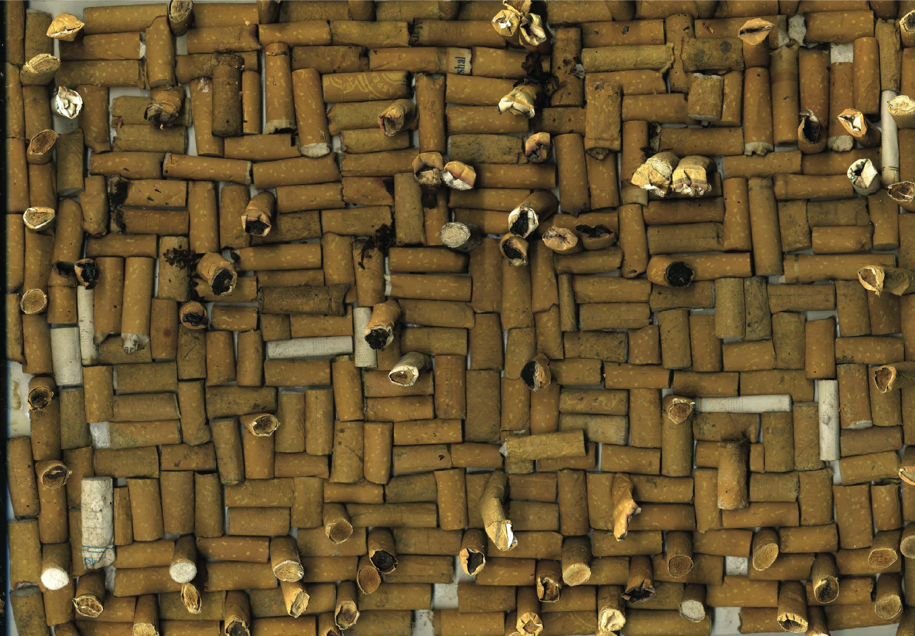 Intercambio 148 |2008 |Colillas de cigarros |21 x 28 cm