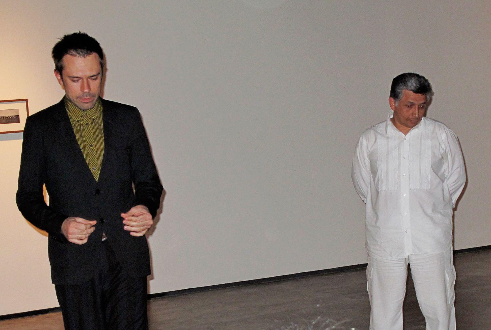 Muestra hipnótica, vista general. 2009