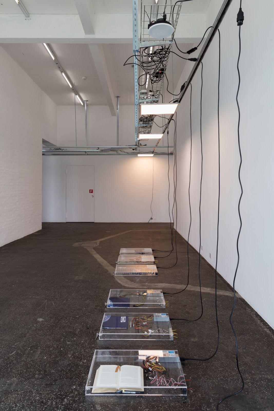 Trusted Traveller en Kunst Halle Sankt Gallen | 2017