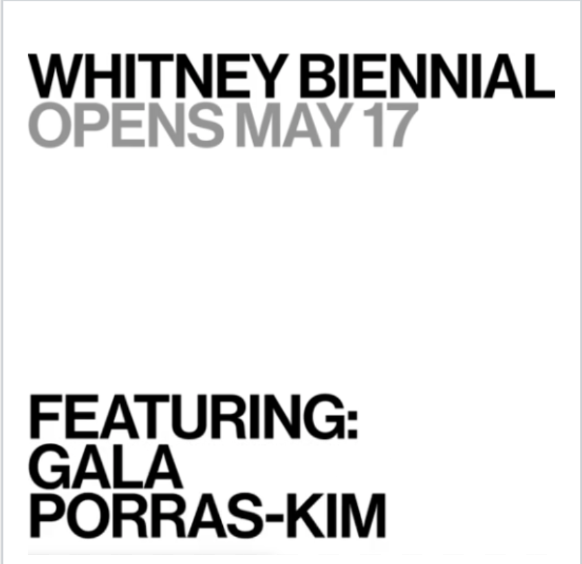 Gala Porras-Kim en la Whitney Biennial