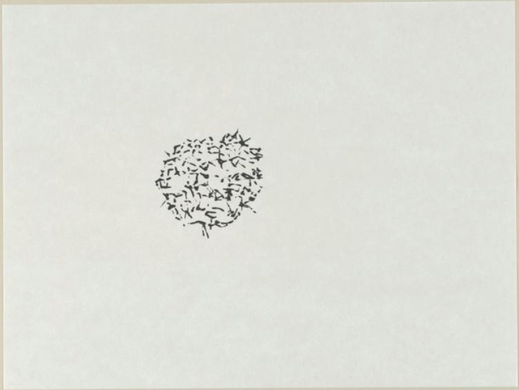 Radiolarias | Tinta japonesa sobre papel | 30 x 40 cm | 2012