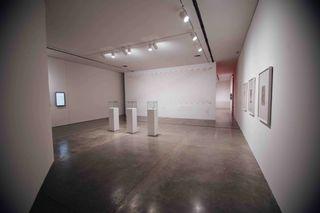 Etienne Chambaud exhibición grupal: Los Multinaturalistas