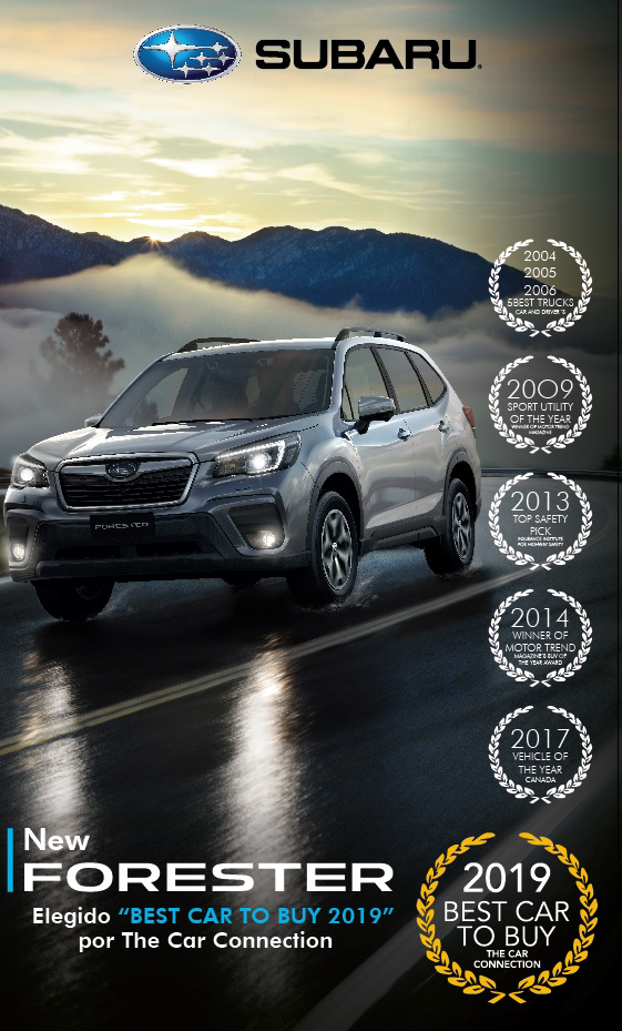 Forester - 2019 Best car to buy