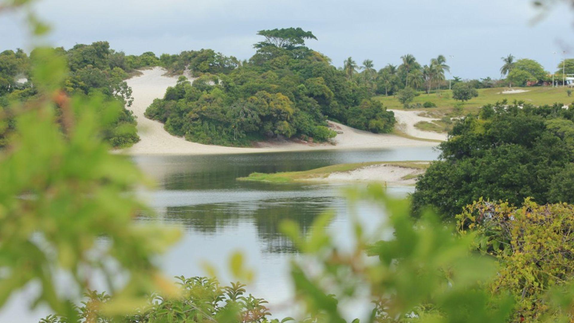 Lagoa do Abaeté. Foto: Acervo da Associação Cultural As Ganhadeiras de Itapuã