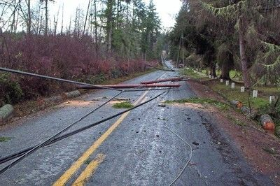 Storm - Downed power line danger