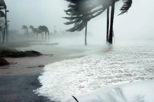 Storm - Coastal Hurricane