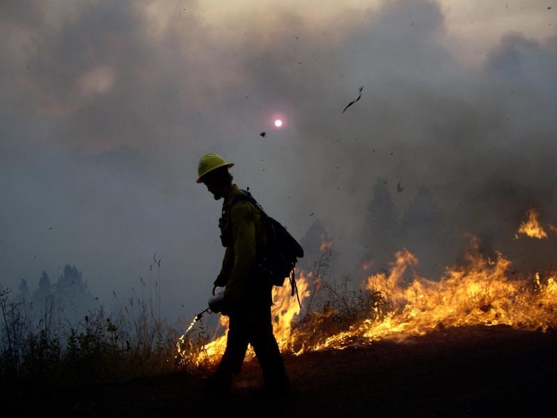 Fire: Prescribed burning of forest debris