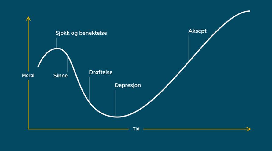 Graf som viser de fem endringsreaksjonene.  Grafen beveger seg fra konkav til konveks kurve.