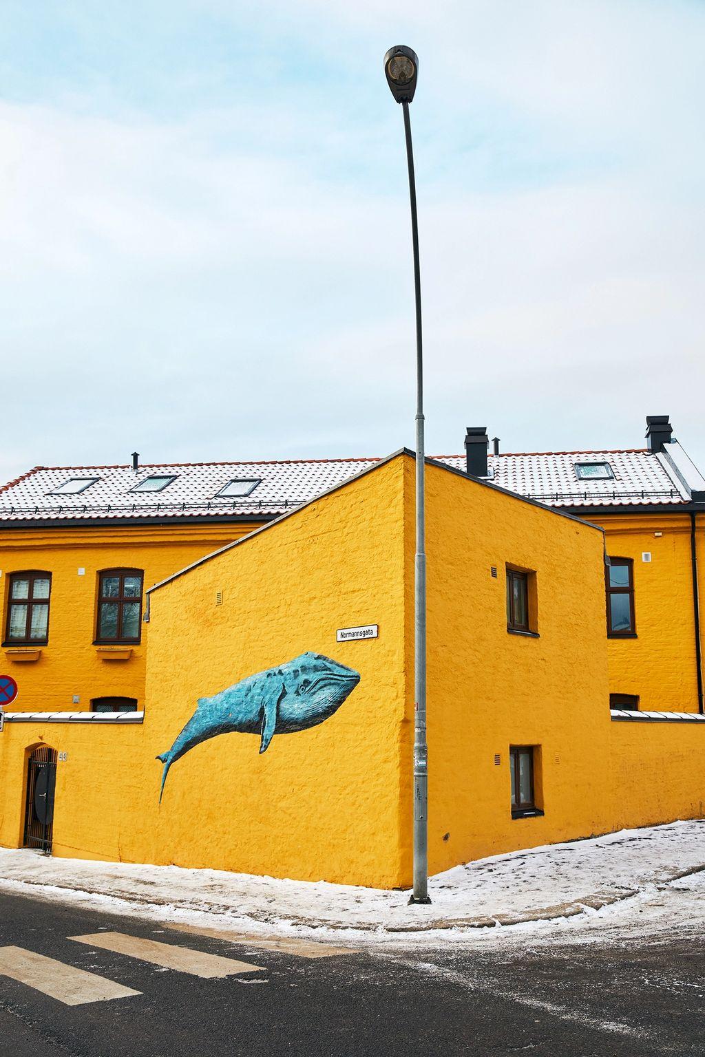 Det historiske arbeiderstrøket Kampen bugner av særpreg og nabolagsidentitet.