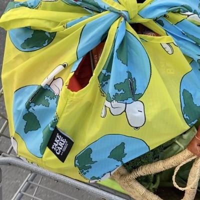earth snoopy standard baggu stuffed full of produce