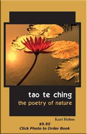 Tao te ching book cover by kari hohne