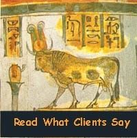 Read what clients say testimonials banner