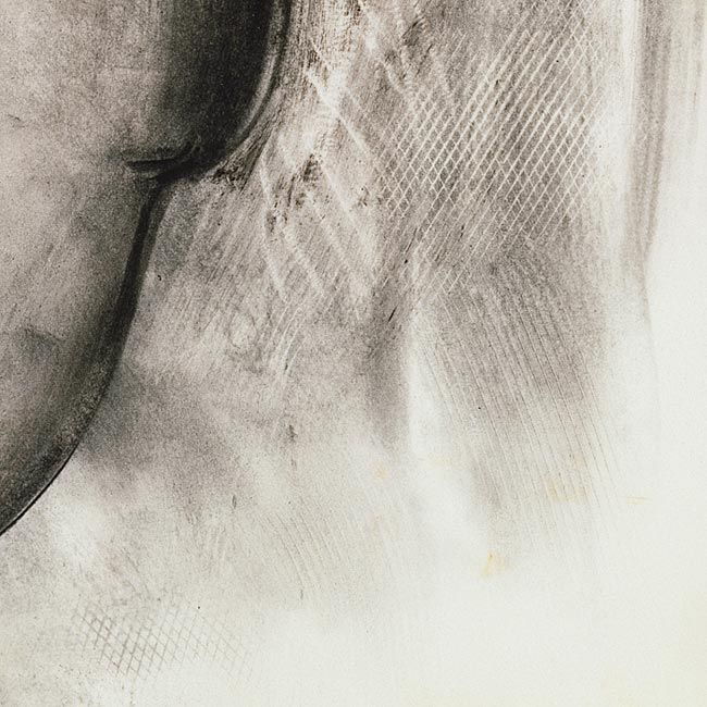 drawing of ear