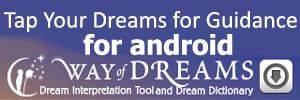 app icon for way of dreams on android
