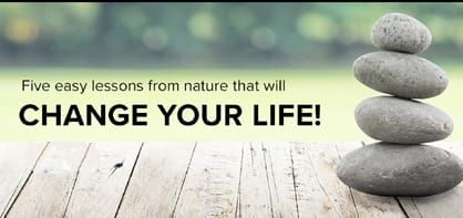 rocks balancing on wood deck with nature in background with text 5 easy lessons from nature that will change your life