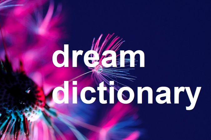 Dream dictionary banner image with colorful dandelion