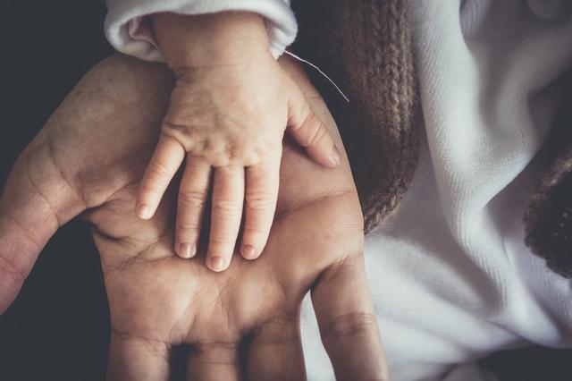 baby hand in parent hand