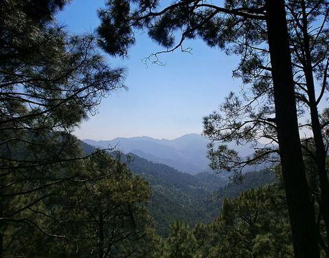 Shivalik Range in Northern India where the Van Gujjars live