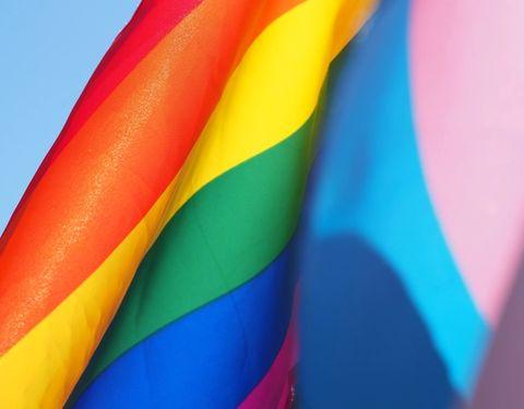 trans flag, LGBTQ flag