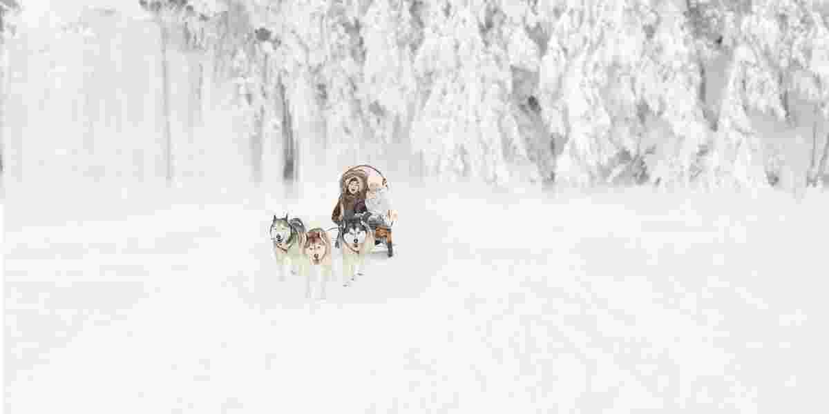 Hund og slede på snø