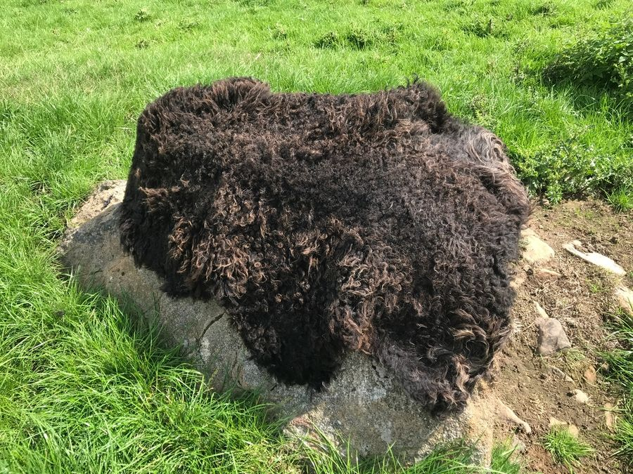 Organic Hebridean Rugs for Sale
