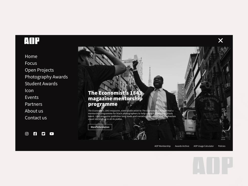 aop web design