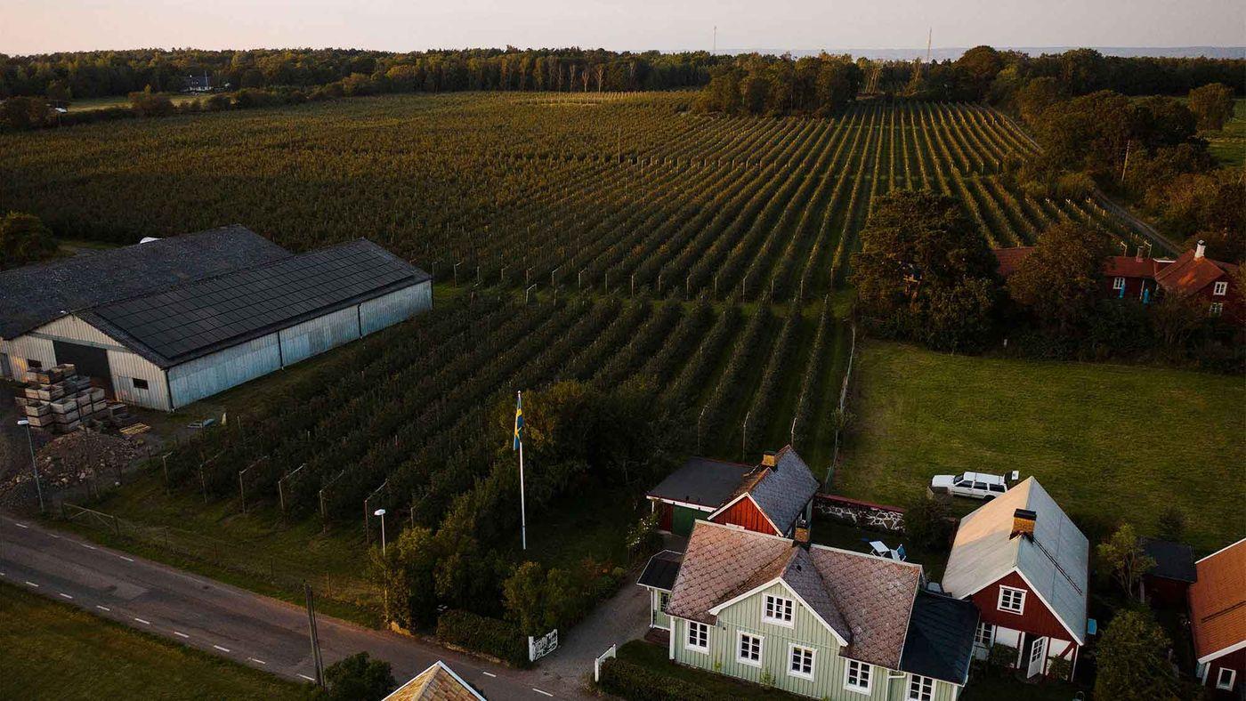 solceller jordbruksfastighet