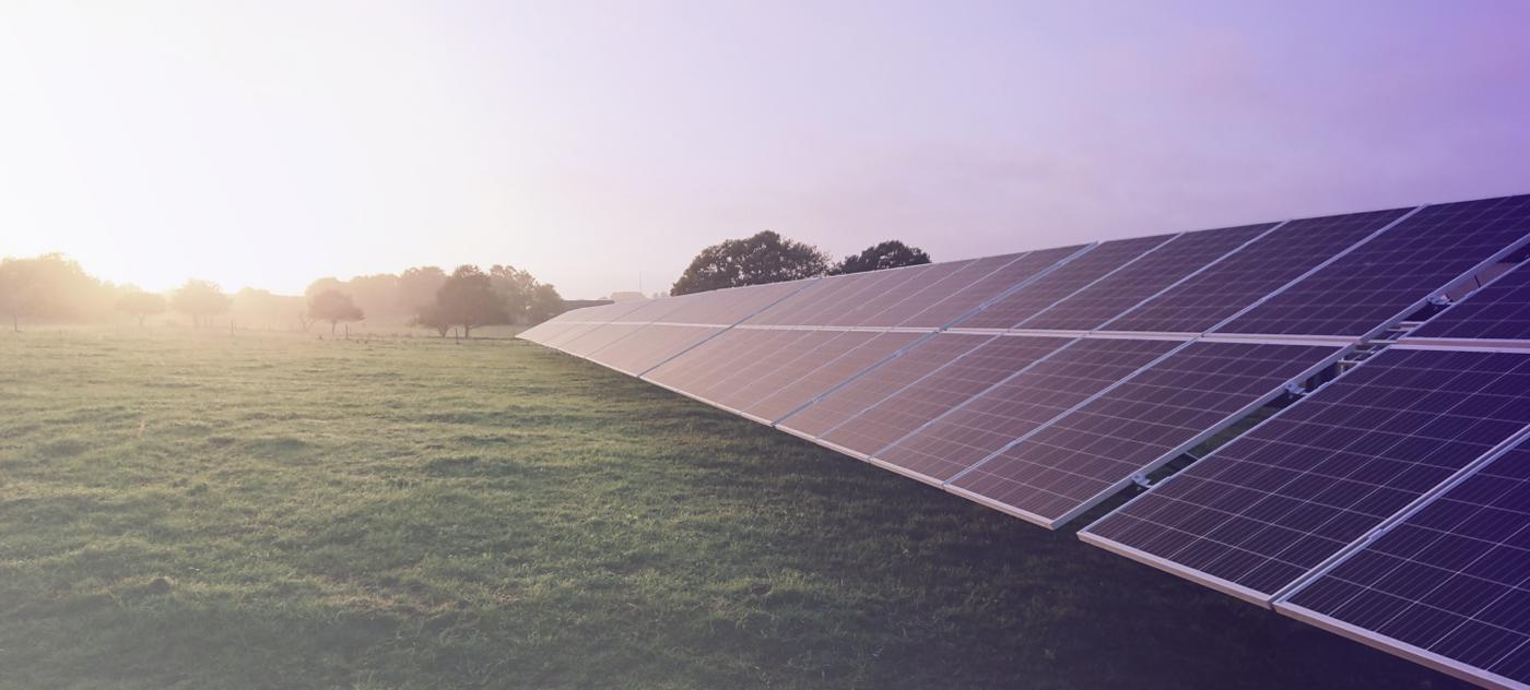 svea solar - solar park lavender gradient