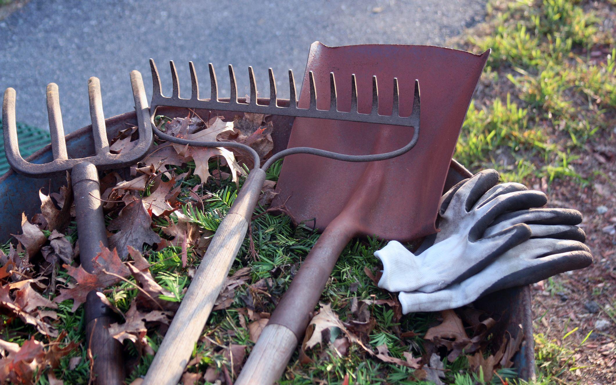 Gjør hagen klar for vinterdvalen