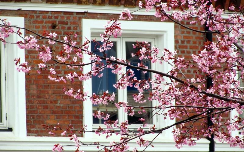 Vårflom i boligmarkedet
