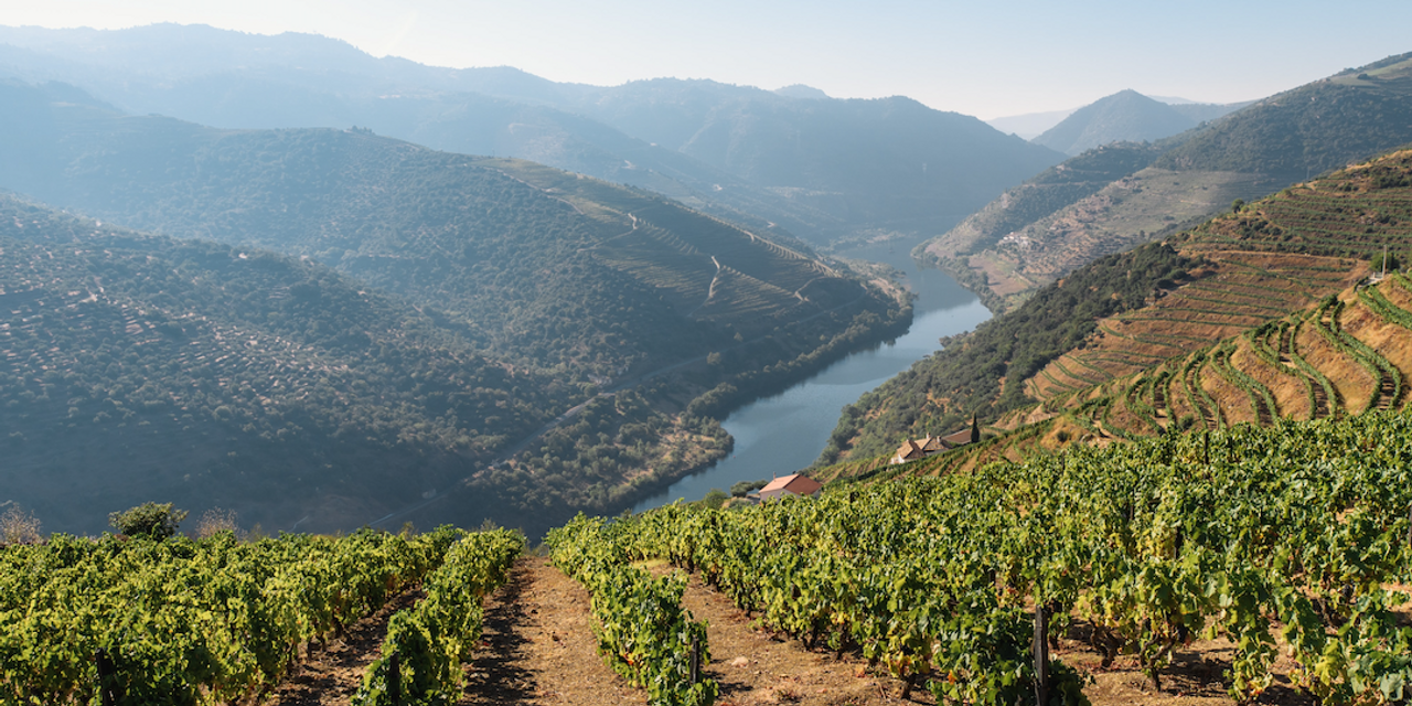 Cover Image for Douro Valley, Portugal