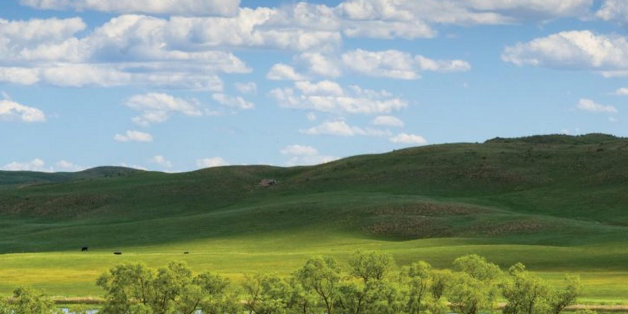 Cover Image for North Platte, Nebraska