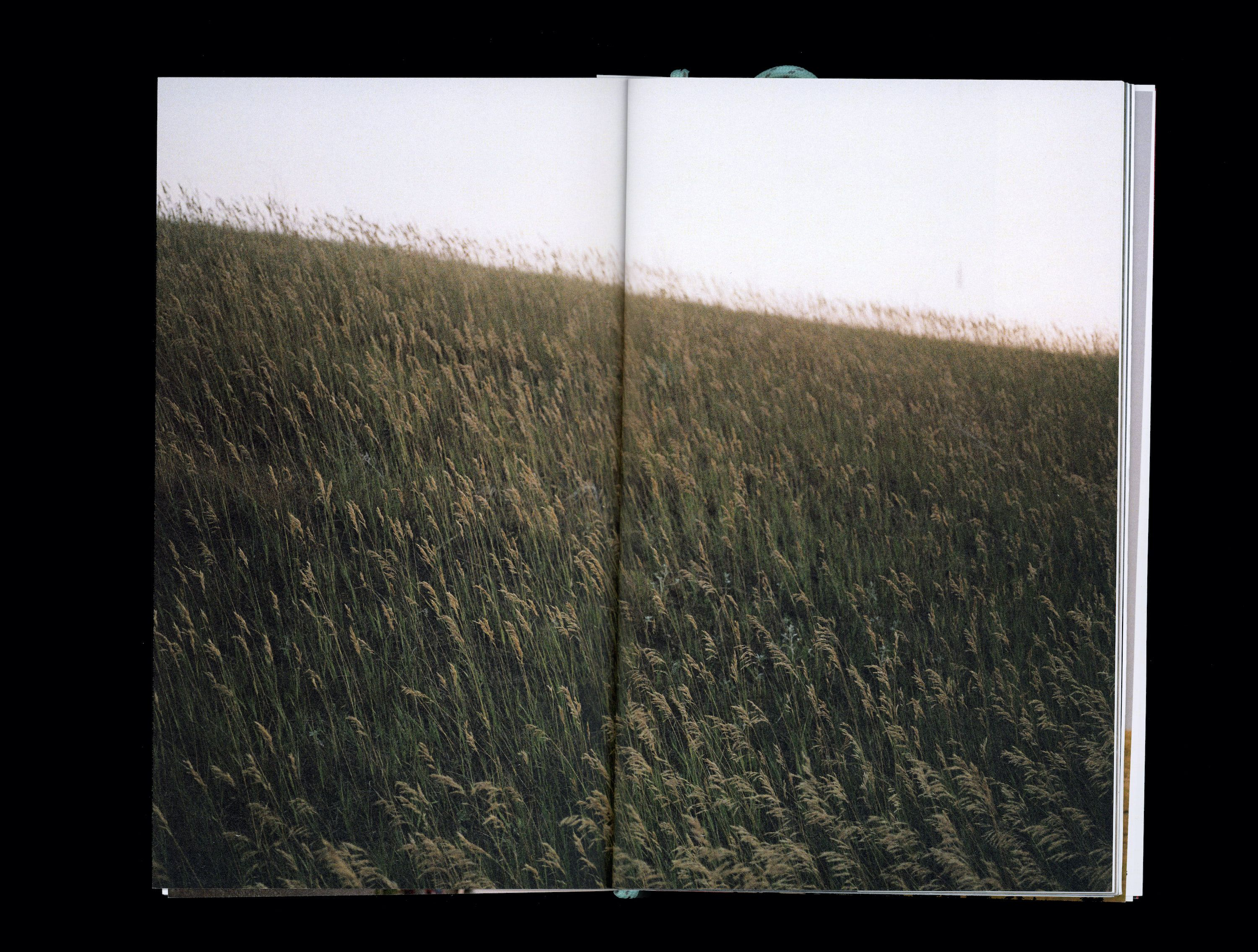 Photograph in book of grass plane