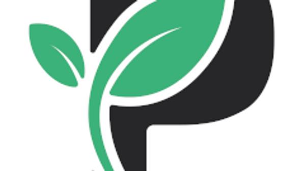 The Passiv Logo