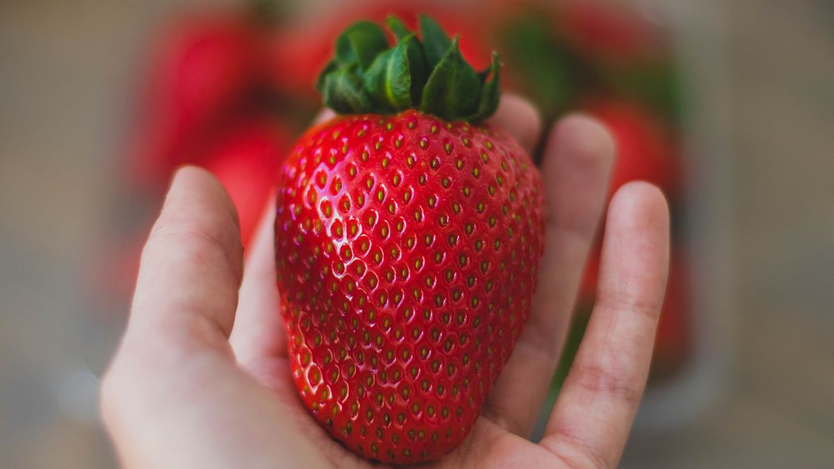 A hand holding a ripe strawberry.