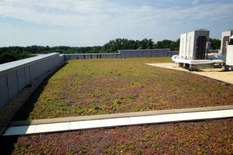 View of green roof of Star Pointe in Montgomery County, MD