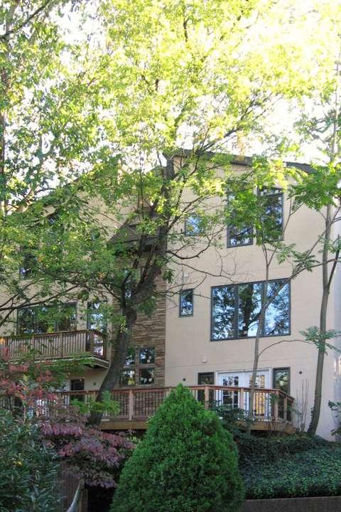 Bird's Eye View House rear facade