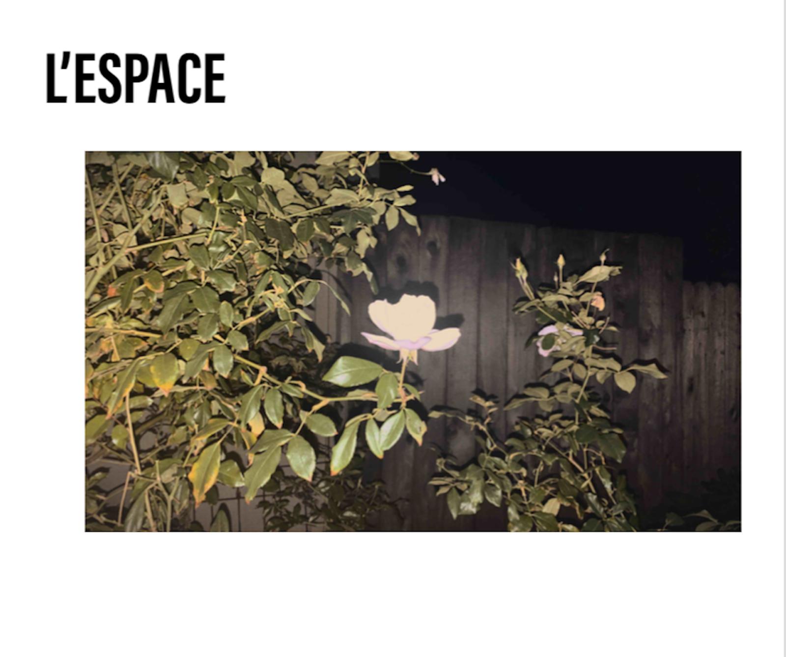 L'Espace - Kailyn Chadwick