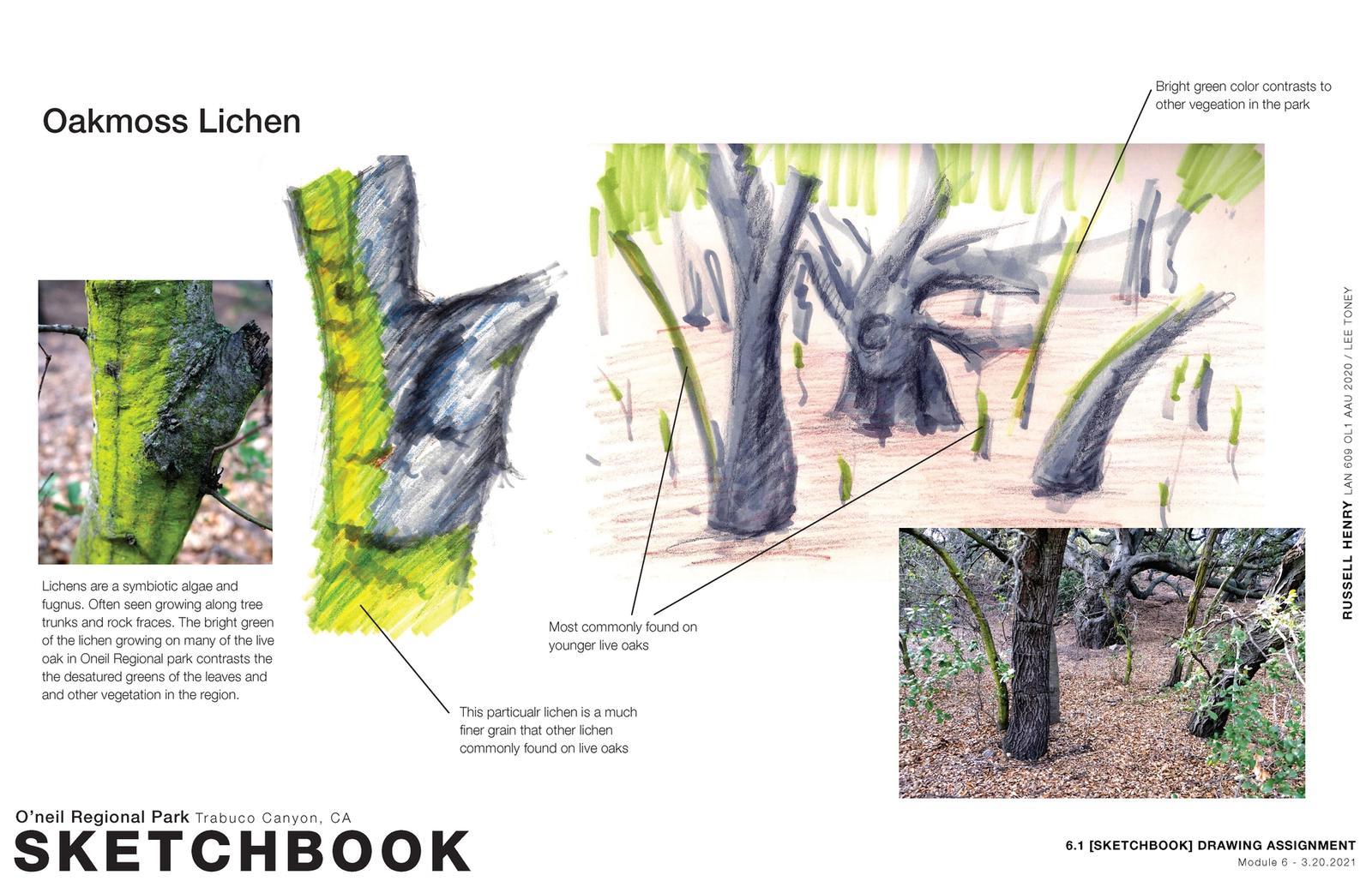 Sense of Place - Sketchbook 2