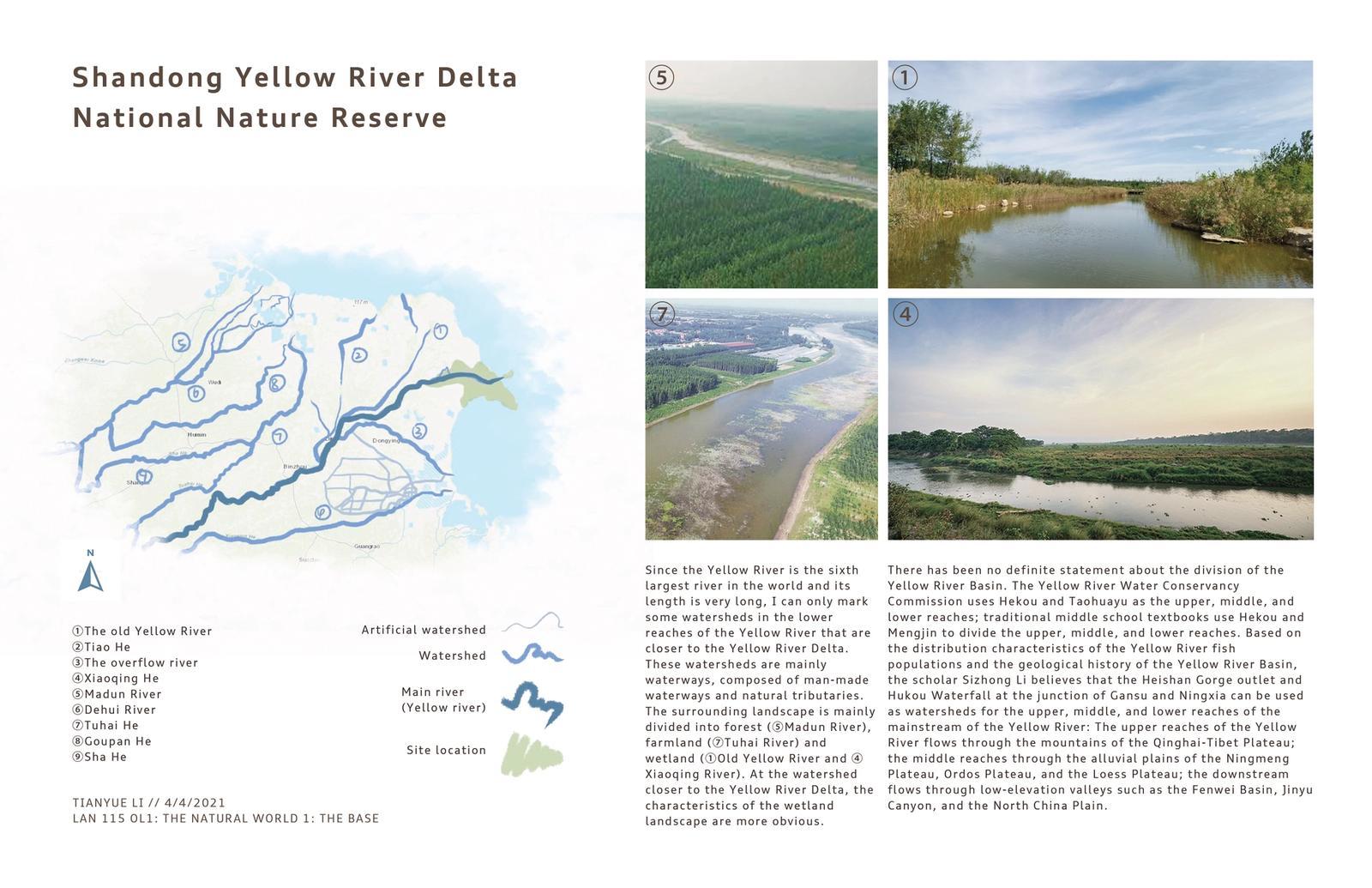 Shandong Yellow River Delta National Nature Reserve 2
