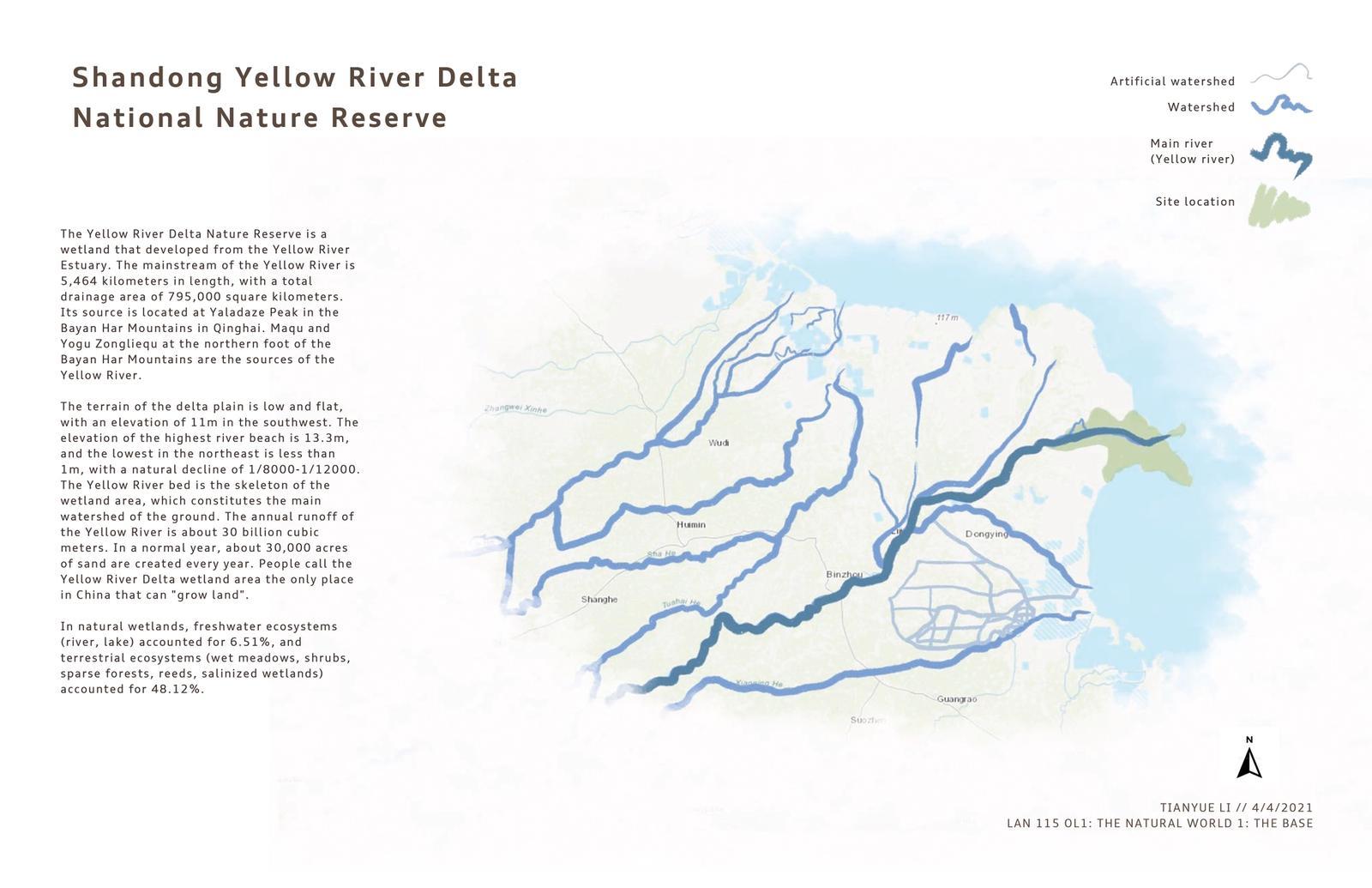 Shandong Yellow River Delta National Nature Reserve