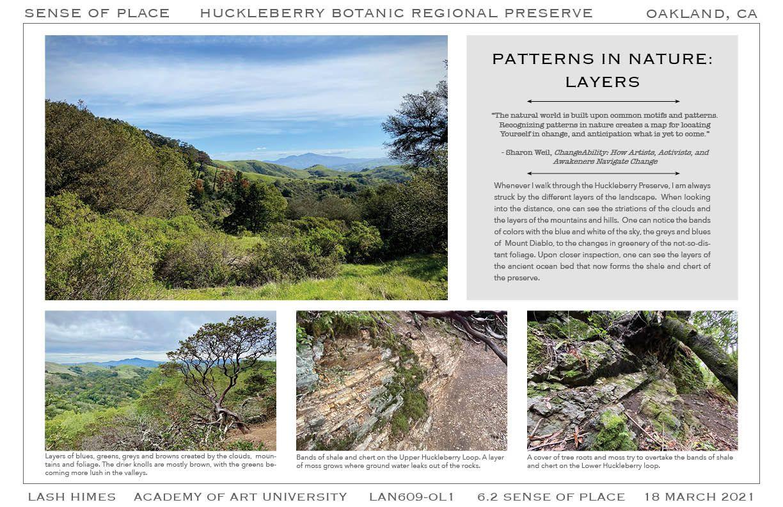 Huckleberry Botanic Regional Preserve - Patterns in Nature 2