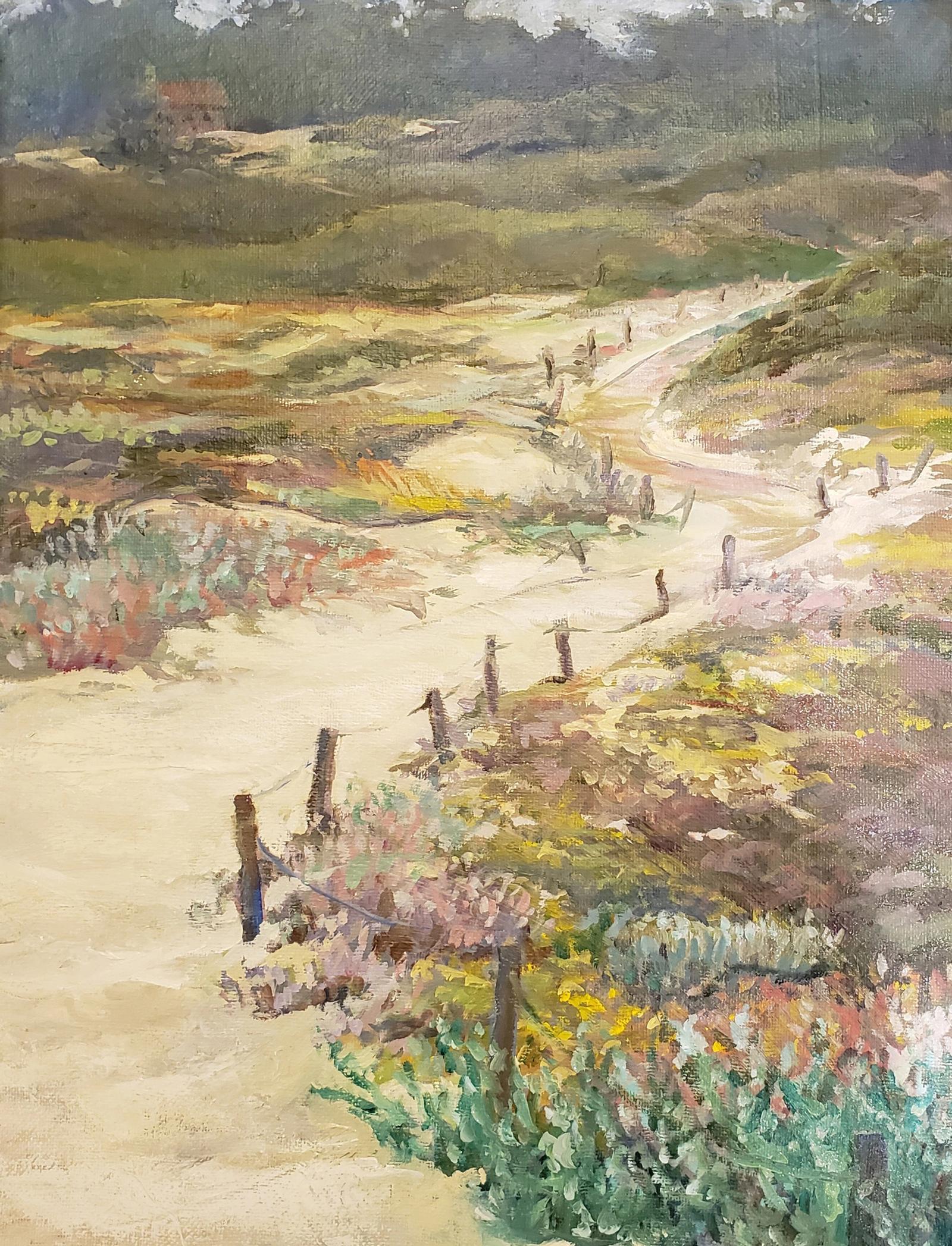 Asilmar Dunes