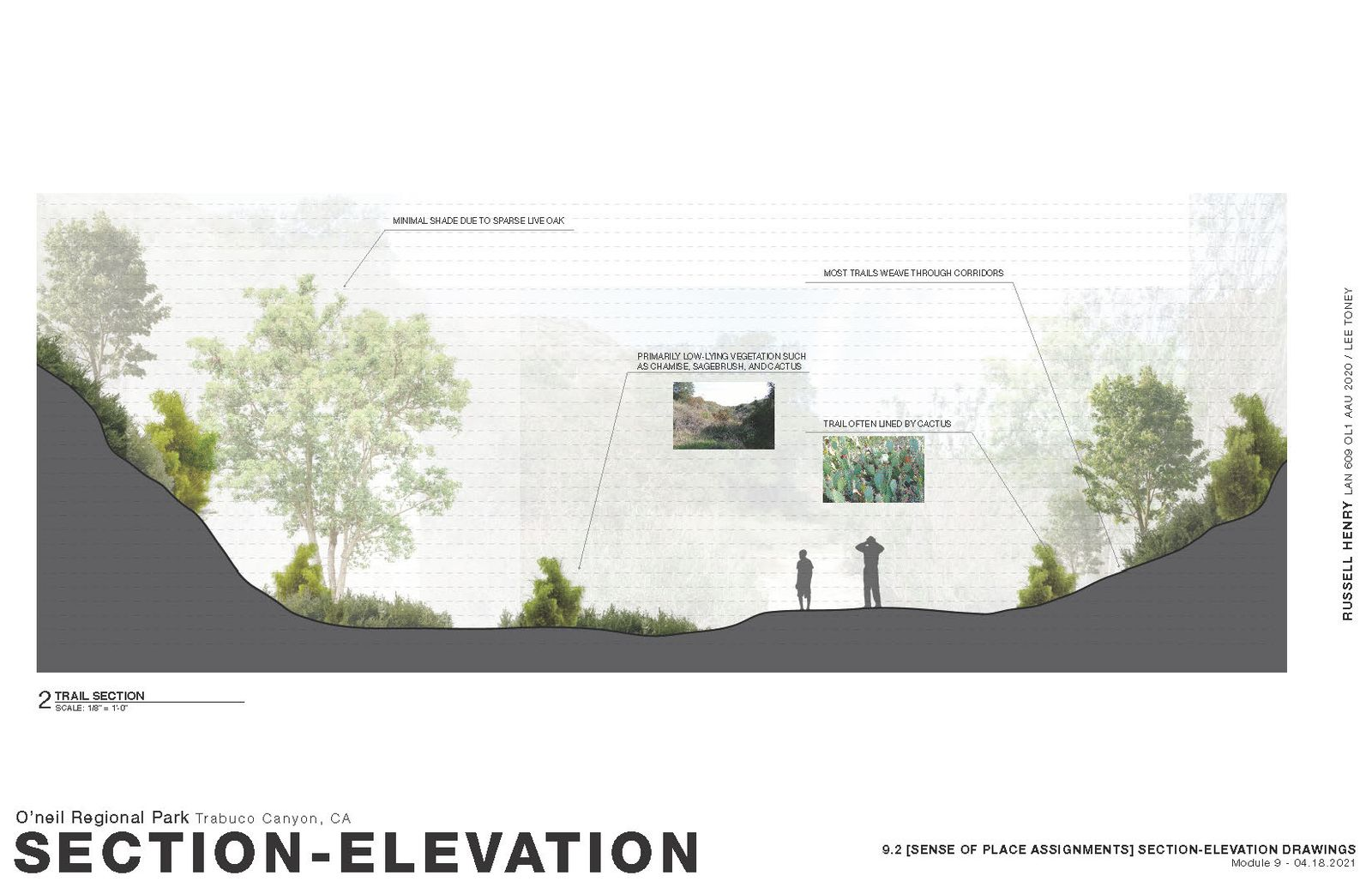 Sense of Place - Section-Elevation 2