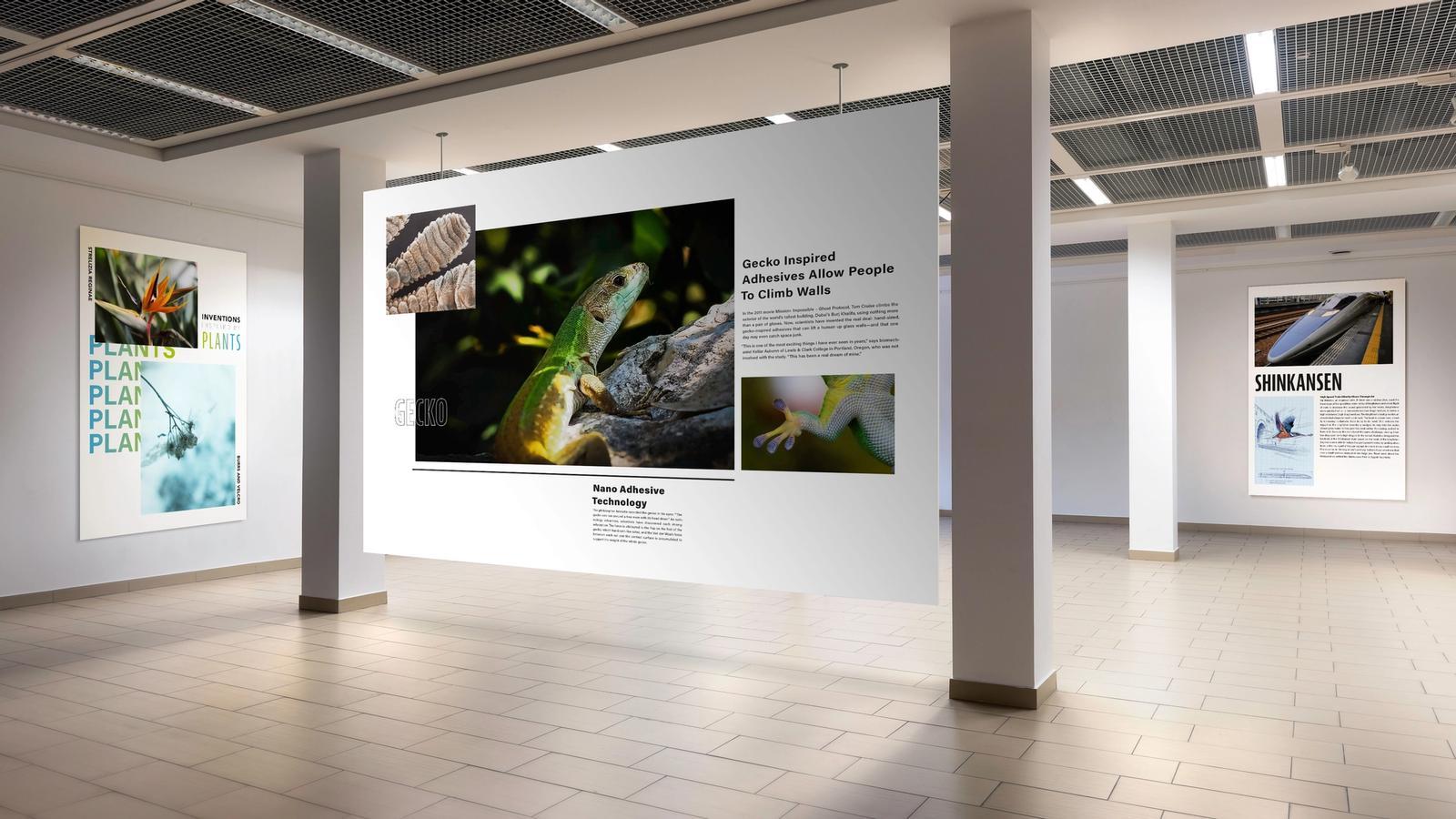 Biomimicry Exhibition